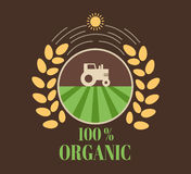 Natural eco organic product label badge  icon Royalty Free Stock Photo