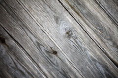 Natural eco texture Stock Image