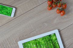 Natural and ecological life. Green forest in your phone and tablet. Royalty Free Stock Photo