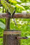 Natural ecology drink water from forest source Stock Photos