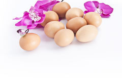 Natural egg with flowers Stock Photos