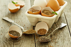 Natural egg replacers Stock Photography