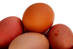 Natural eggs Stock Photography