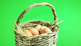 Natural eggs rotating in basket with green screen background. Natural eggs rotating in basket with green screen stock video