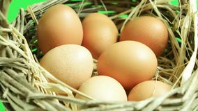 Natural eggs rotating in basket with green screen background. Natural eggs rotating in basket stock video footage
