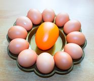 Natural eggs on a tray ready for easter painting stock photos
