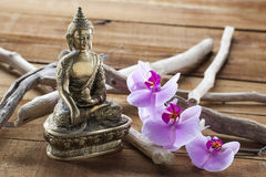 Natural elements for beauty treatment still-life with zen mindset Royalty Free Stock Image