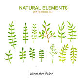 Natural elements, Watercolor paint high resolution Stock Photos