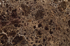 Natural Emperador Dark Gold marble texture Stock Images