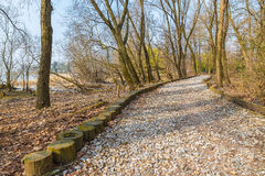 Natural engineering - soil bioengineering.  Example of protection of a dirt road from high water and from water erosion Royalty Free Stock Photography