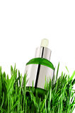 Natural essential oil in bottle with fresh green. Natural herbal essential oil in bottle with fresh green grass  for beauty care Stock Images