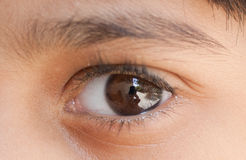 Natural Eye Closeup Stock Image