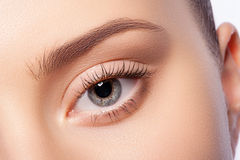 Natural eye makeup Royalty Free Stock Image
