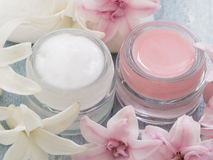 Natural facial cream Stock Photography