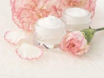 Natural facial cream Royalty Free Stock Image