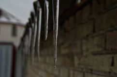 Icicles hang from the roof, they look beautiful and elegant, but they carry a serious danger. stock photo
