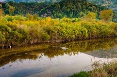 Natural Fall Landscape Environment Stock Photos