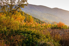 Natural Fall Landscape With Mountains Royalty Free Stock Photo