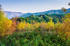 Natural Fall Landscape With Mountains Royalty Free Stock Image