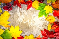 Natural fall leaves. Flat lay frame on gray stone background, retro toned royalty free stock photo
