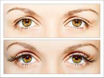 False eyelashes. Natural and false eyelashes before and after stock photo