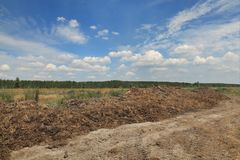 Natural fertilizer, cow dung in field. Heap of cow dung  ready to use in field with blue sky and clouds, natural fertilizer Stock Image