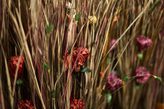 Natural Fiber Dried Grasses and Dried Flowers in a Vase Royalty Free Stock Images