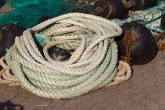 Natural fibre rope. On the ground Royalty Free Stock Photo
