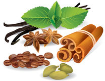 Natural flavors and spices Royalty Free Stock Image