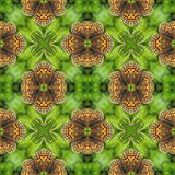 Natural floral background composed of butterfly wing patterns Royalty Free Stock Photos