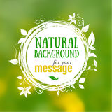 Natural floral background with place for your text Royalty Free Stock Photography