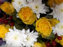 Floral background with yellow roses and white chrysanthemums Stock Photography