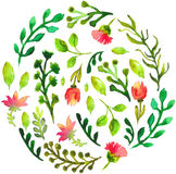 Natural floral circle background with green leaves and red flowe Stock Photo