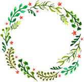 Natural floral circle background with green leaves and red stars Stock Image