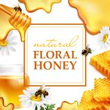 Natural floral honey colorful frame Royalty Free Stock Photos