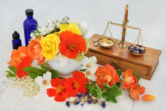 Natural Flower and Herbal Therapy Stock Photography