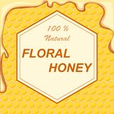 Natural flower honey in a frame against a background of honeycombs. The concept of natural flower honey. Flat design,  illustration Royalty Free Stock Image