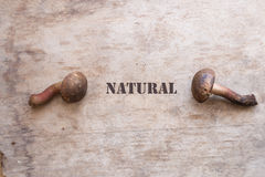 Natural food concept Royalty Free Stock Image