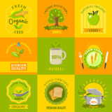 Natural food emblems flat icons set Royalty Free Stock Photo