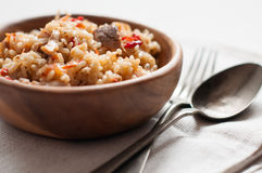 Natural food: rice with meat and vegetables Stock Images
