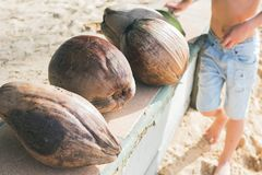 Natural food of Thailand coconut fallen palm. Natural food of Thailand brown coconut or Cocos nucifera L. in stiff crust on seashore fallen from palm trees Most stock images