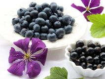 Natural Foods, Fruit, Blueberry, Berry Stock Image