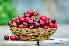 Natural Foods, Fruit, Local Food, Produce royalty free stock photo
