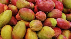 Natural Foods, Fruit, Produce, Food Royalty Free Stock Photography