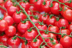 Natural Foods, Vegetable, Local Food, Fruit royalty free stock images