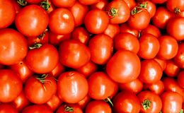 Natural Foods, Vegetable, Local Food, Tomato stock image
