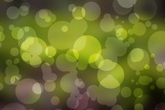 Natural forest bokeh. Natural circle spring forest bokeh Royalty Free Stock Images