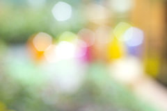 Natural forest bokeh Stock Photo
