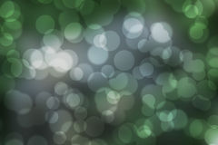 Natural forest bokeh. Stock Photos