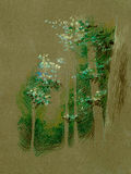 Natural Forest trees illustration  Stock Photo